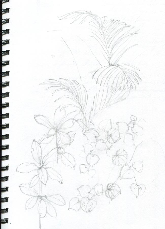tropical_sketch