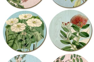 Vintage NZ botanical placemats