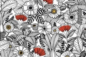 NZ flora gift wrap