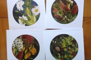'Old Master' NZ Botanical Greeting Cards