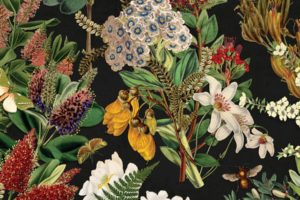 'Old Master' NZ botanical Gift wrap