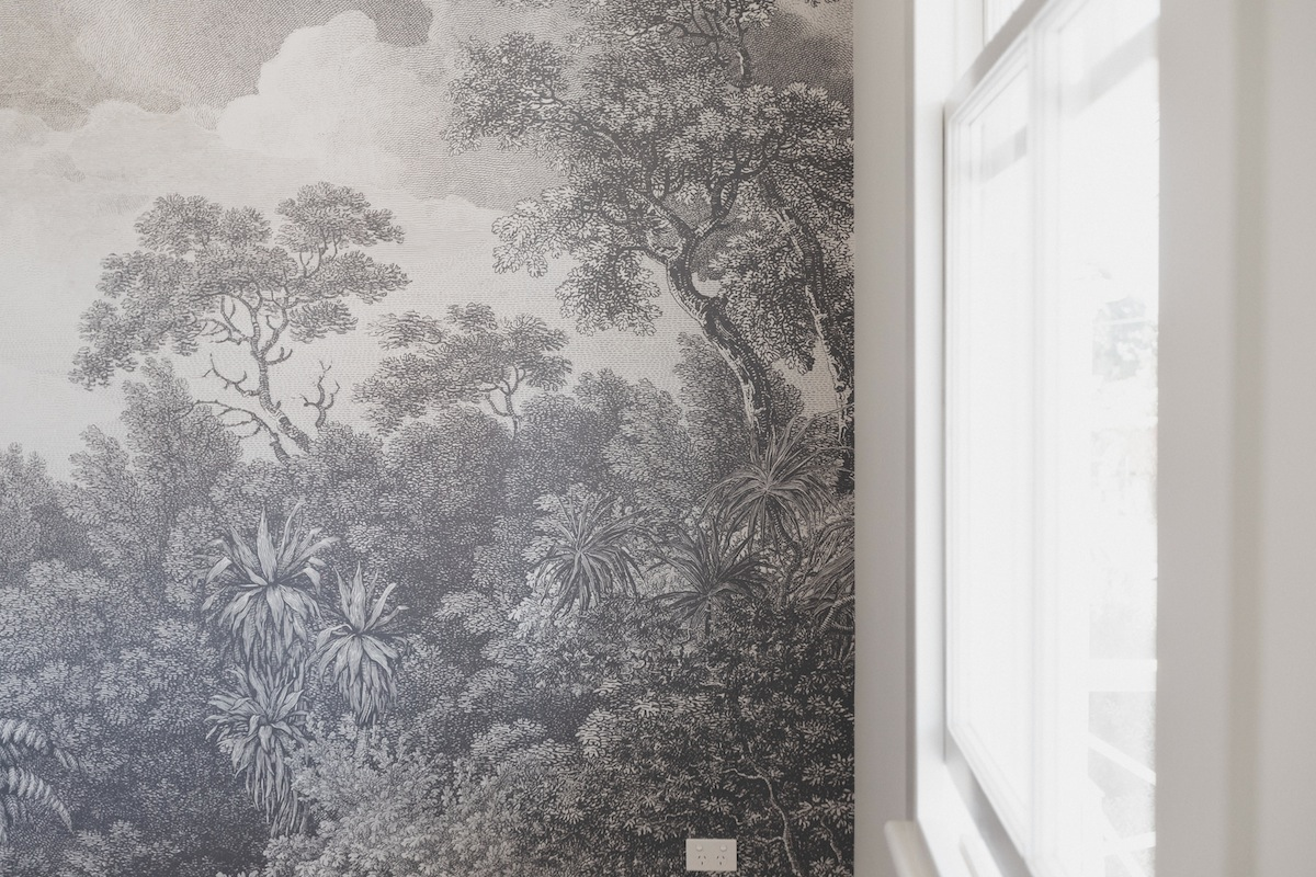New Zealand custom wallpaper design Wildscape wallpaper mural by Tanya Wolfkamp